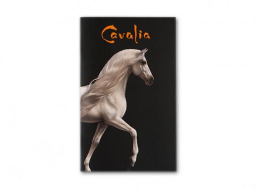 cavaliaProgram