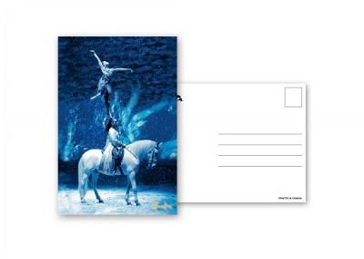 postcardBungee