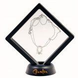 J-horseshoe pendant with transparent box